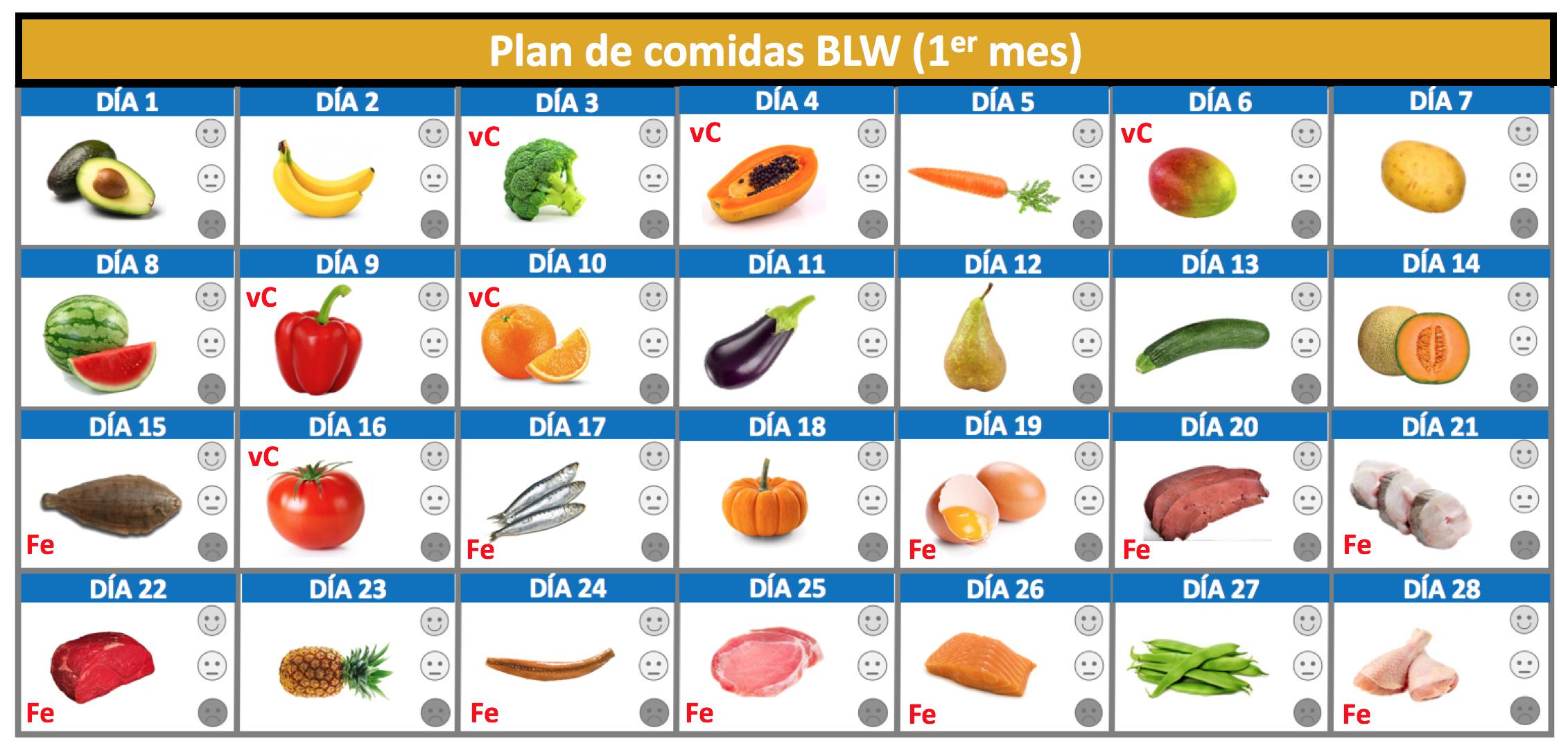 Plan alimentos blw 2