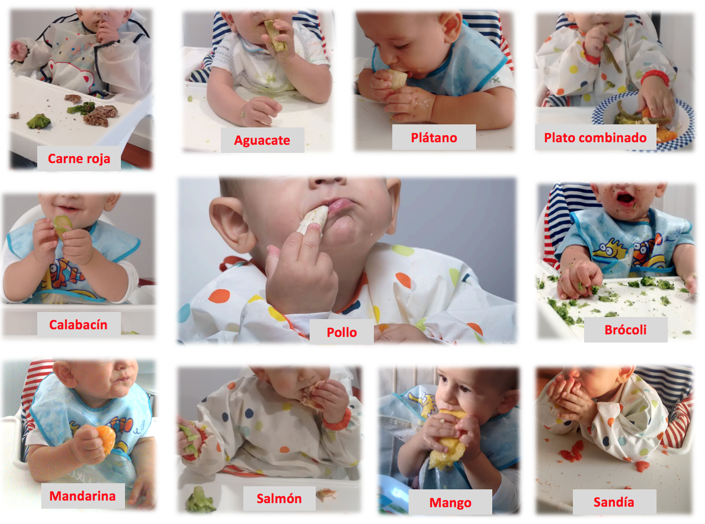 Primeros meses de baby led weaning 2