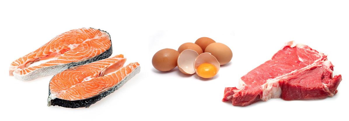 alimentacion embarazo - dha