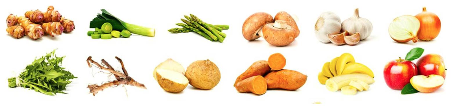 alimentos ricos en prebioticos