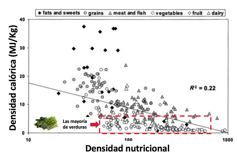 verduras nutrientes grafica