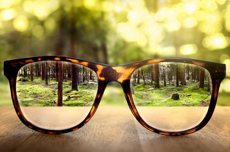 disciplina positiva - gafas