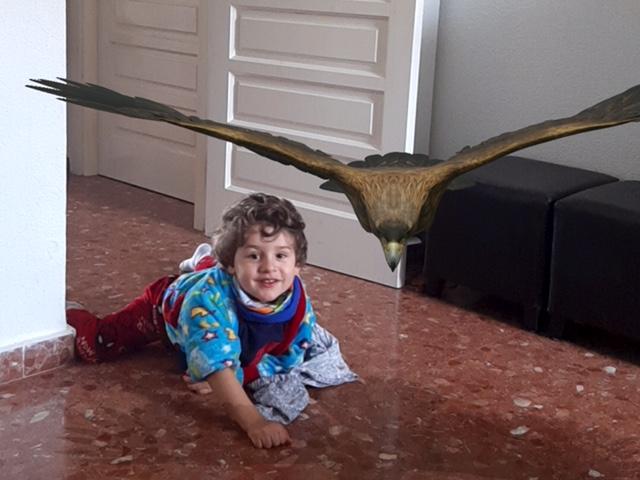 actividades para niños en casa - animales1