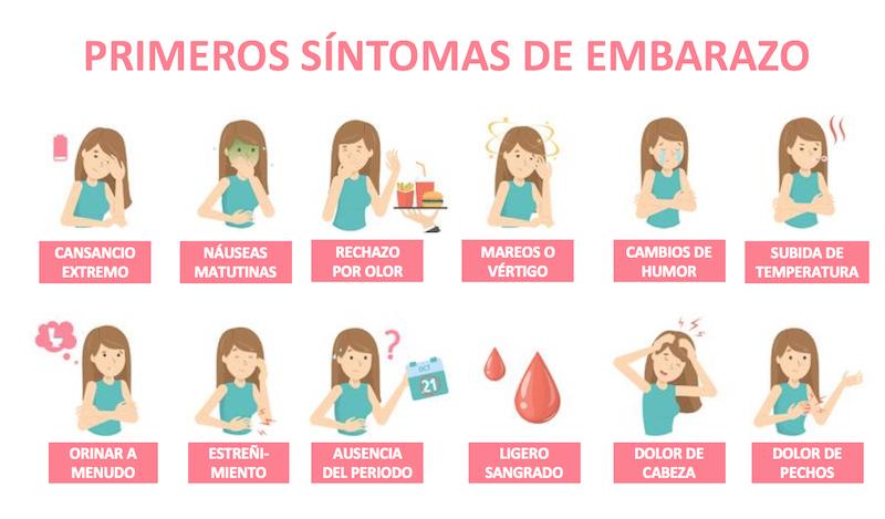 sintomas embarazo primeros meses - infografia 2